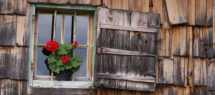 Pintura para madera pintar muebles puertas y suelos - Pinturas de madera ...