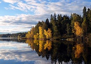 Pintar paisajes